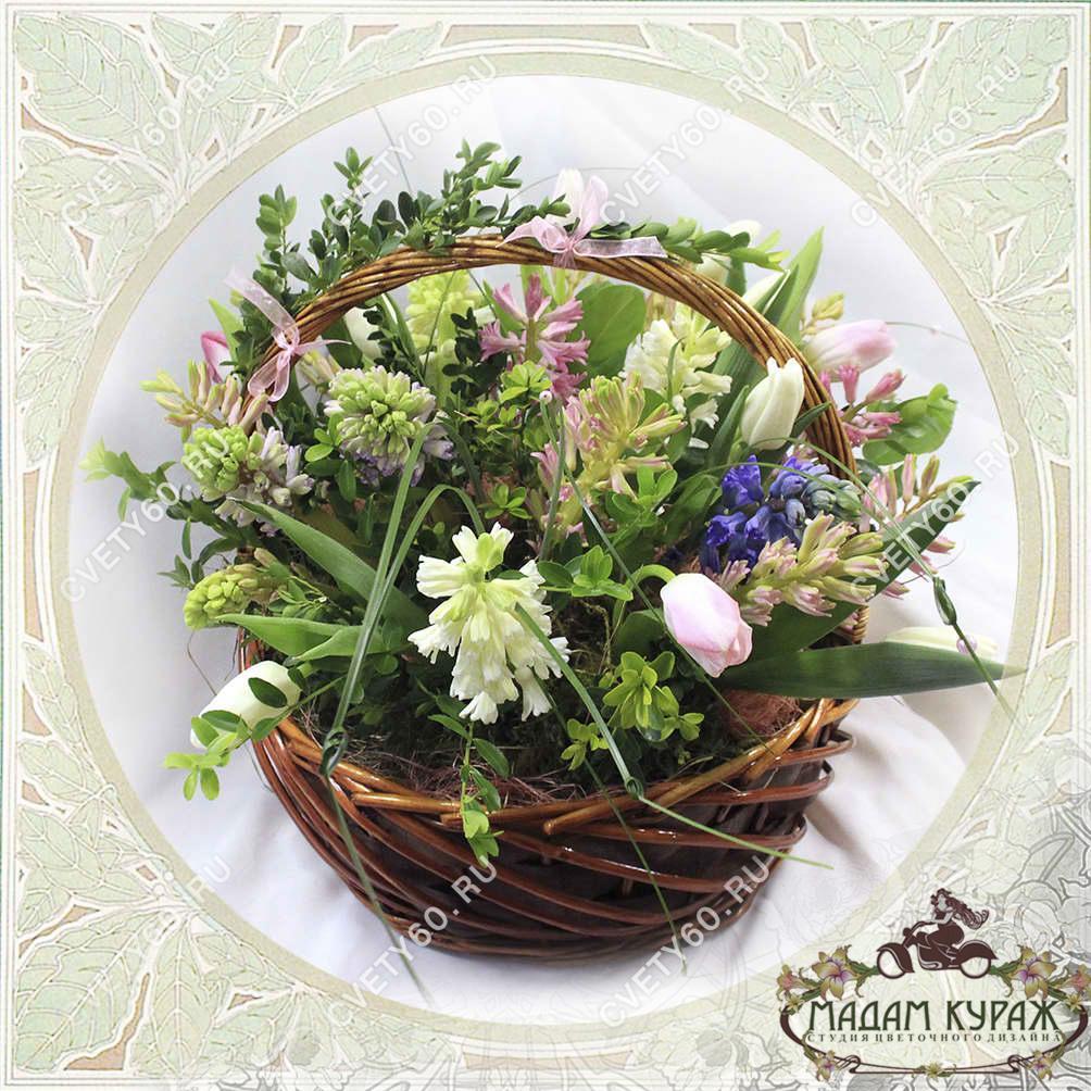 Цветы в Пскове, Цветы с доставкой в Пскове на 8 марта, корзина из гиацинтов в Пскове Открытка