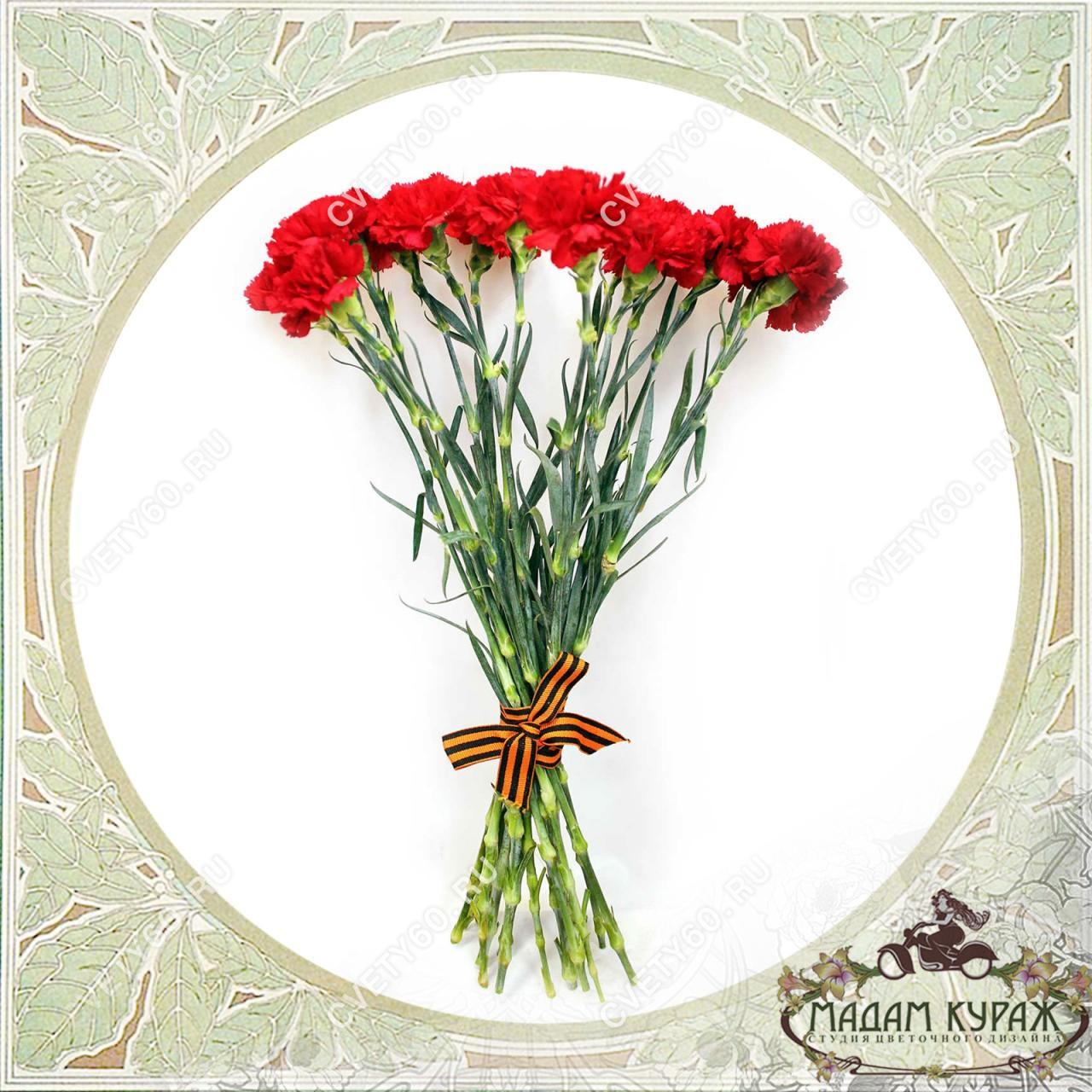 Красные гвоздики в Пскове Открытка