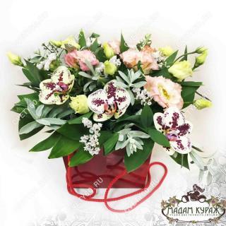 Орхидеи и эустомы в подарочной коробочкеПсков