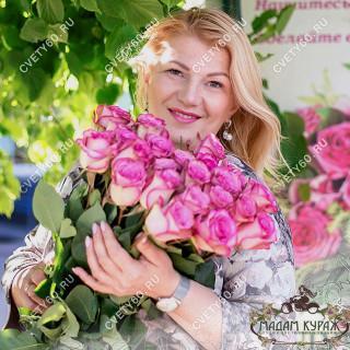 розы Псков