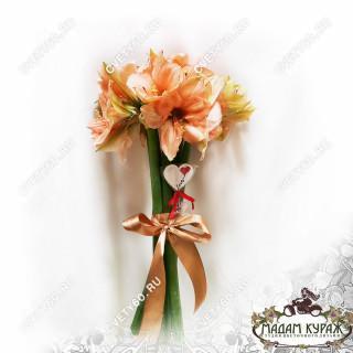Несравненные персиковые амариллисы в подарок на 14 февраляПсков