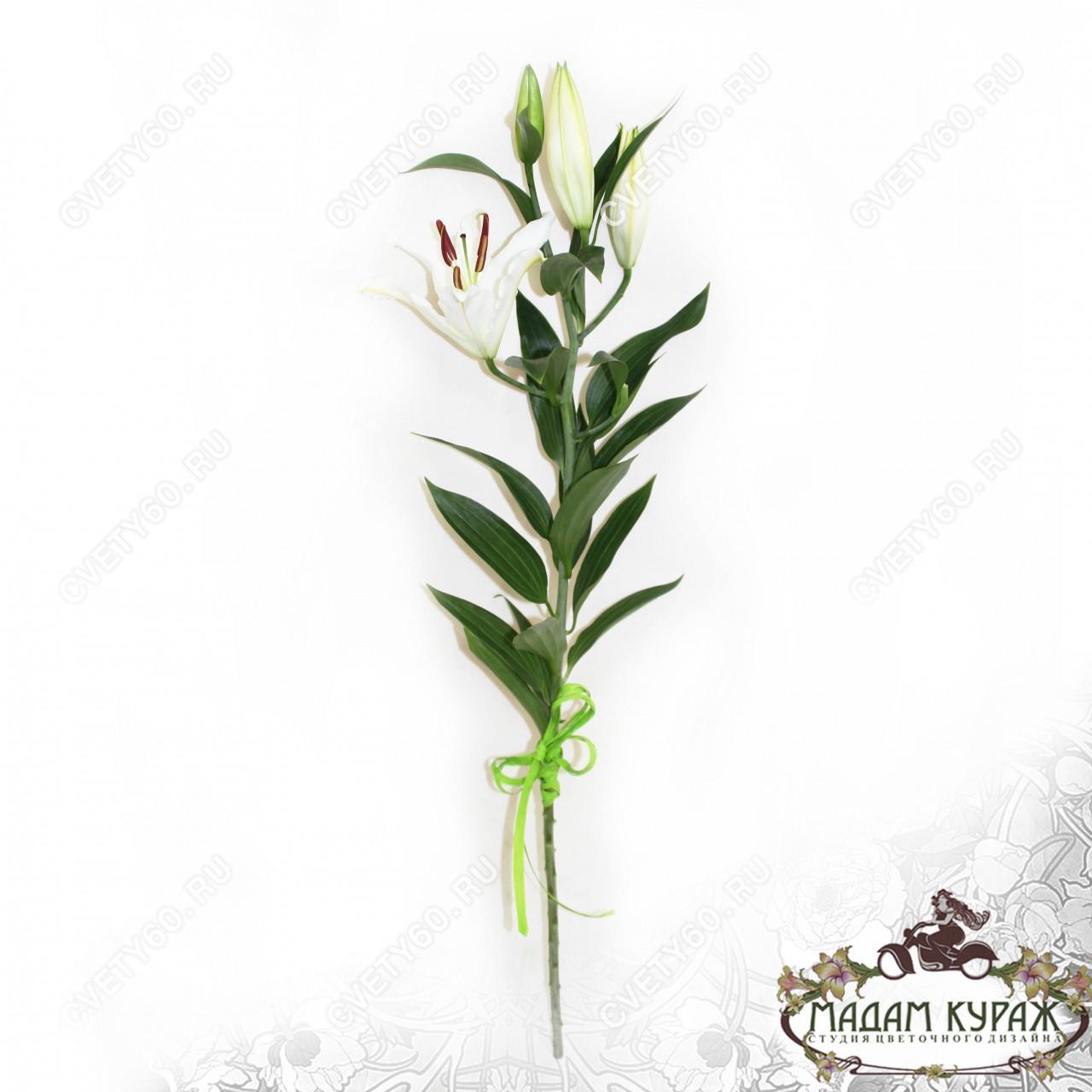 Белые лилии с доставкой