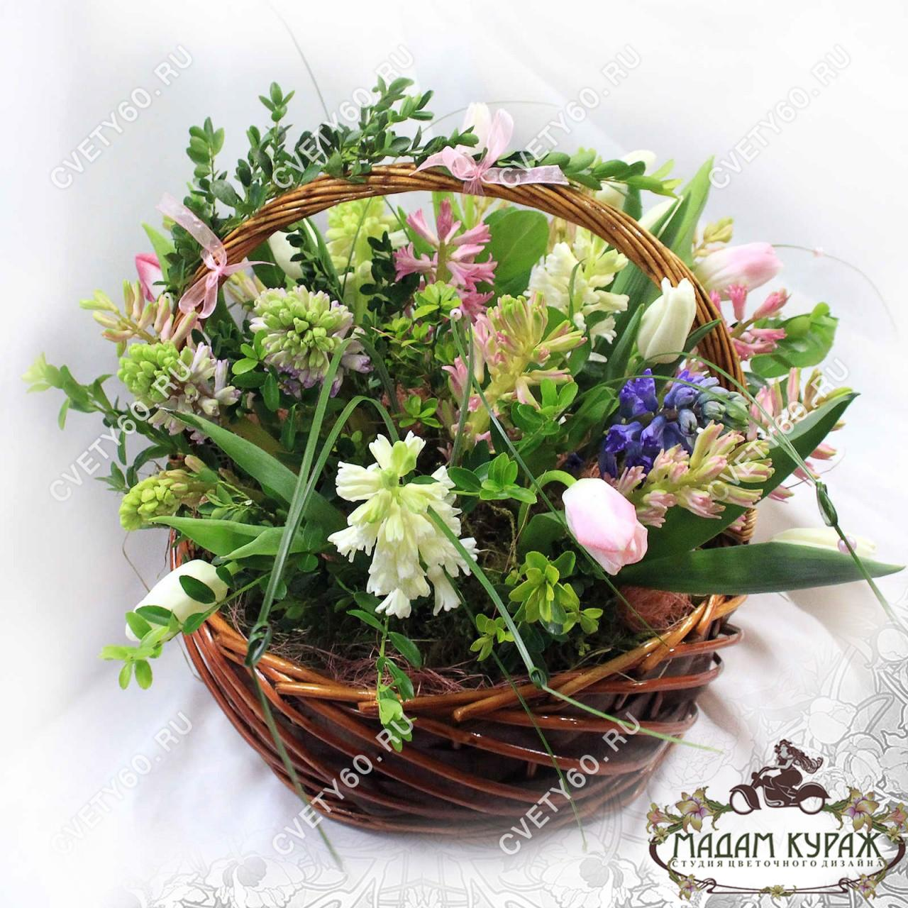 Цветы в Пскове, Цветы с доставкой в Пскове на 8 марта, корзина из гиацинтов в Пскове
